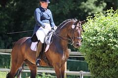 IMG_5098 (dreiwn) Tags: horse pony horseshow pferde pferd equestrian horseback reiten horseriding dressage reitturnier dressur reitsport dressyr dressuur ridingclub ridingarena pferdesport reitplatz reitverein dressurreiten dressurpferd dressurprfung tamronsp70200f28divcusd jugentturnier