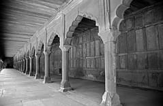 Taj Mahal 212 (David OMalley) Tags: world india heritage river site tomb taj mahal agra unesco mausoleum shah pradesh uttar jahan mughal mumtaz yamuna