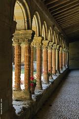 Saint-Papoul - Aude (Jacques-BILLAUDEL) Tags: europe france languedocroussillon aude saintpapoul abbaye abbei clotre closter