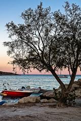 Le bateau rouge de Marathi (Lucille-bs) Tags: europe grce greece crte creta kriti marathi arbre bateau mer crpuscule couleur sable