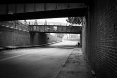 chrisborrel-1000147 (chrisborrel) Tags: blackwhite leicam246monochrom bw blackandwhite street streetphoto streetphotographer streetphotography streetpics