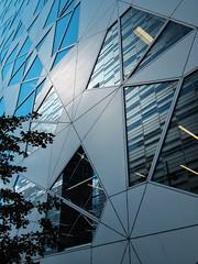 reflections (dan.boss) Tags: windows tree oslo facade reflections barcode bjrvika