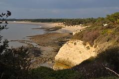 Suzac (1) (Laurent Ruiz) Tags: soleil cte plage drone hauteur royan suzac