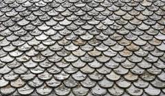 Une rgion de pcheurs ... (a fishing area) (Larch) Tags: roof fish abstract texture scale grey gris fishing pattern curve toit poisson lofoten lofotenislands pche courbe abstait caille ileslofoten