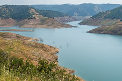 Low Water Levels at New Melones Lake (Serendigity) Tags: dam trees usa drought newmelones water lowlevel unitedstates watersupply california reservoir