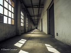 Abandoned (David Cucaln) Tags: david cucalon empty vacio industrial lights textures texturas lineas ventanas windows wall pared