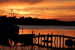 Sunset (evisdotter) Tags: sunset kvll evening siluetter silhouettes brygga jetty sunsetlight colors sooc fiskehamn habor korrvik mariehamn