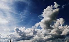 The bird (PattyK.) Tags: sky clouds bird ioannina whereilive ilovephotography greece     2016 february