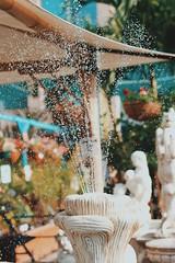 Spray. (Melissa Kumaresan) Tags: massivedork vsco vscocam canon canon600d tumblr foutain spray water gardencentre garden centre outdoor daytime daylight sunny sunlight farmersmarket market