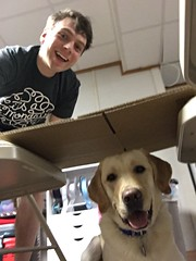 Calvin likes to selfie with Brendan sometimes (hero dogs) Tags: dog labrador cute therapydog servicedog