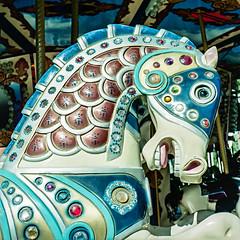 Spirited (JMLPhotographyOnLine) Tags: sculpture horse 6x6 film carousel delraybeach 80mm28 hasselblad203fe fujihp400 epson750