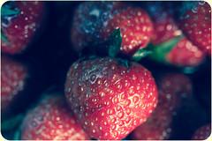 Berry (Dóra B.) Tags: fruit berry good small eat gott litur fallegt lítið dorabirgis