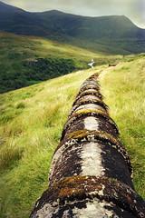 Pipeline (fredo f) Tags: scotland highlands pipe pipeline tuyau kinlochleven ecosse
