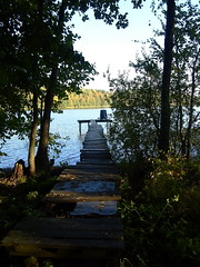 Bridge lake (Mgd8126) Tags: bridge autumn sun lake tree love water leaves sunshine forest boat olympus penlite epl3