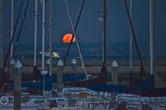 March Fifth Full Moon (David McSpadden) Tags: moon march fullmoon sanfranciscobay fifth weekendshowcase