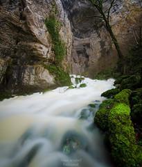 Le Bief Sarrazin (ThomasJacquemotPhotographie) Tags: river riviere paysage poselongue longueexposure