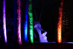 P1000881 - Osterinsel-Monument (JB Fotofan) Tags: light monument lumix licht frankfurt panasonic bume palmengarten bunt steinfigur winterlichter fz1000