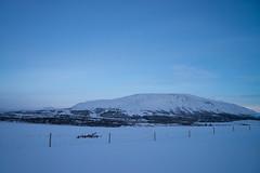 DSC01347 (ekremenak) Tags: photo iceland 1502 150212