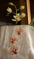 l'orchidée commence à fleurir (sabine-43) Tags: fleur orchidée broderie