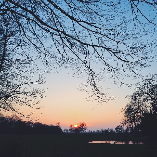Seize every opportunity that life offers you because, when opportunities go, they take a long time to come back. ~ Paulo Coelho   #quote #inspiration #sunset #trees #landscape #nature #sun #sky #scenery #view #countryside #moody #laskamood #pond #field