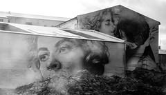 Guido van Helten - Reykjavik (Jannes Glas.) Tags: portrait wall reykjavik guido helten