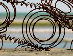 Circles within circles within circles ... (Snorkle-suz) Tags: spring beach sea ocean blue newzealand nz aotearoa water waves sand treasure outside outdoor coast seashore shore seaside nikoncoolpixl120 metal rusty rust foundonthebeach dof artistic beaches beachtreasure beachtreasures himatangibeach circle circles round circleswithincircles coils loops bedsprings mattresssprings shell seashell shells seashells thespring shallowdepthoffield