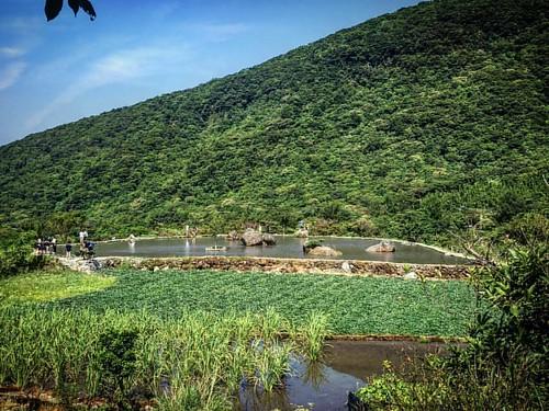 8️⃣ #taipei #taiwan #yangmingshan