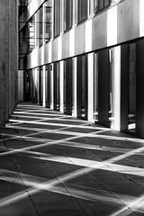 Zentrum fr Biotechnologie und Umwelt I (_LABEL_3) Tags: shadow berlin architecture de deutschland architektur schatten linien kolonnaden