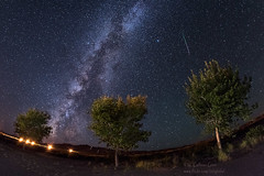 Meteor and Milky Way (inlightful) Tags: trees sky night stars nighttime astrophotography astronomy nightsky meteor starrynight milkyway starrysky