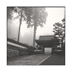 gate  koyasan, kansai  2015 (lem's) Tags: japan fog rolleiflex temple gate koyasan kansai japon brouillard planar portail