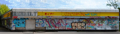 Urban Decadence - Via Sant'Abbondio, Milan (simy_sun) Tags: street urban colorful colors composit panorama composition photoshop photomerge milan italy milanosud milano sud