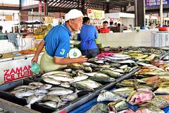 Pasar Chabang Tiga (chooyutshing) Tags: pasarchabangtiga wetmarket fishstall kualaterengganu terengganu malaysia