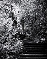 Two ladies enjoy a summer hike (I saw_that) Tags: park ladies lady stairs forest steps national gatineau uncool pinkslake uncool2 uncool3