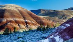 Sutton Mountain Wilderness Study Area (BLMOregon) Tags: centraloregon paintedhills suttonmountain suttonmountainwilderness