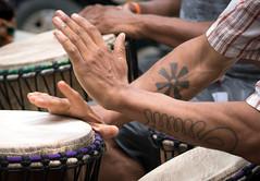Phife is Living festival (vpickering) Tags: festivals drummers drumcircle wordsbeatslife hands drums phifeisliving drumming drum drummer hand