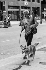 A man, his guitar and his dog (PJMixer) Tags: 52weekproject bw fuji summer toronto candid dog musician people street uptown