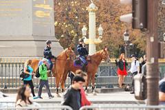 La Garde rpublicaine  la Concorde. (caramoul25) Tags: paris concorde chevaux cavaliers touristes photographes caramoul25