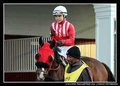 IMG_9584 (femalejockeys) Tags: femalejockeys turfway park female athletes horse racing horses thoroughbred kentucky derby