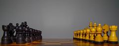 Macro Monday/ Opposites (shpongleri) Tags: macro mondays chess black yellow board europe pentax k50 game play flickr croatia
