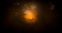sunset (raimundl79) Tags: nikon nikond800 wow wald wolke exploreme explore explorer flickrexploreme flickrr fotographie follow4follow flickrsexploreme foto sunset sunshine smokey landschaft lichtspiel lightroom