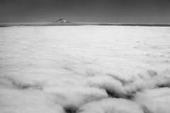 "Mt. Hood ""Peaking"" Through (acyee) Tags: mthood pdx portland oregon aerial airplane plane"