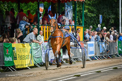 070fotograaf_20160728_039.jpg (070fotograaf, evenementen fotograaf) Tags: harnessracing racing draverij drafsport paardensport paardesport harness paardenmarkt holland netherlands nederland 070fotograaf kortebaandraverij voorschoten 2016 paarden draven kortebaan