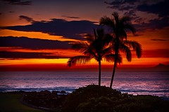 Deep orange Hawaiian sunset | Photography by Cord Cardinal (manbeachrm) Tags:  clouds sunsets  blue naturelovers sunrise orange sunsetstream sunsetporn sundown skylovers pordosol cloud skylinen natureperfection naturelover landscapelovers landscapes natur landscapecaptures horizon puestadesol silhouette instasky piclogy trbsunsetsfx