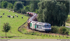SNCF 467629 + 467494 @ Ripain (Wouter De Haeck) Tags: belgique belgië cargo sncf brabantwallon tubize sociéténationaledescheminsdeferfrançais clabecq waalsbrabant l115 somain sncffret bb67000 brissonneauetlotz infrabel steenslag quenast ripain clabecqmarchandises