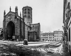 PIACENZA - Sant'Antonino innevata (M&M78) Tags: winter sky ice gelo square neve piazza piacenza freddo piazzasantantonino