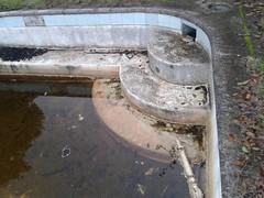Stikland Hospital Pool (arno_van) Tags: abandoned pool dirty swimmingpool samsungs3mini