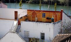 Living Room (offroadsound) Tags: portugal balcony livingroom algarve coloured bunt tavira varanda colorada gilão salledeséjours