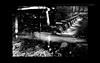 "Canal (karakutaia) Tags: sun tree love nature japan paper temple tokyo heart afotando ""flickraward"" flickrglobal allbeautifulshotsandmanymoreilovenature flowerstampblackandwhite transeguzkilorestreetarturbanagreatshotthisisexcellentcontestmovementricohgxr""serendipitygroupbluenatureicapturecardjapanesepapercardflickraward5""j trasognoerealtabstractelementsorganizersimplysuper"