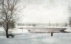I wish I had a river I could skate away on . . . (anniedaisybaby) Tags: winter river pond jenny sarahmclachlan interlake greyskies earlysnow wishihadariver icouldskateawayon memoriesbook absenceofcolour magicartoftextures texturesthanksto magicunicornverybest magicunicornmasterpiece kerstinfrank texturingtheworld goldencrotalo coveringjonimitchell beforethepondfreezes