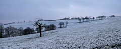 Au milieu des champs (fjozon) Tags: winter snow landscape hiver neige paysages xe2 fjozon